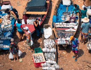 Illegal fishing is a global issue and affects everyone.